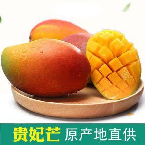 辰翰产地水果批发零售一件代发招代理